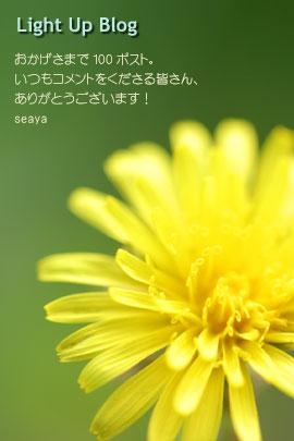 c0032145_2222525.jpg