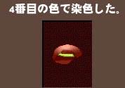 d0035264_418326.jpg