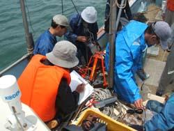 有明海調査 2005/6/1_c0052876_2312934.jpg