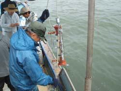 有明海調査 2005/6/1_c0052876_231847.jpg