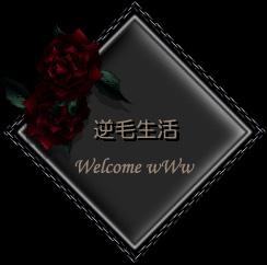 d0036526_3553957.jpg