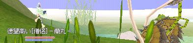 b0061527_61757.jpg