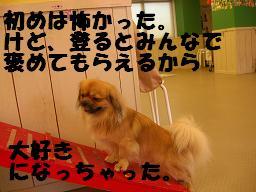 c0004744_10171461.jpg