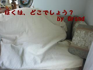 d0003698_16454552.jpg