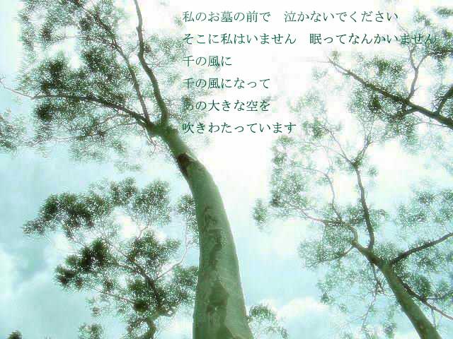 d0051759_0471297.jpg