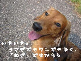 b0044804_10534827.jpg