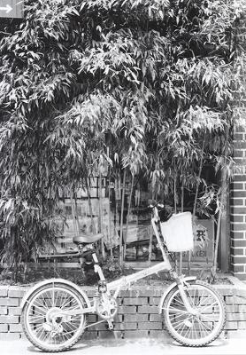 自転車_a0018745_20232593.jpg