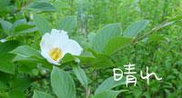 b0065666_19551639.jpg