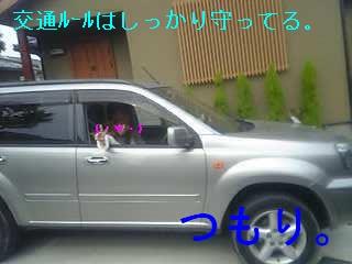 c0065879_1839176.jpg