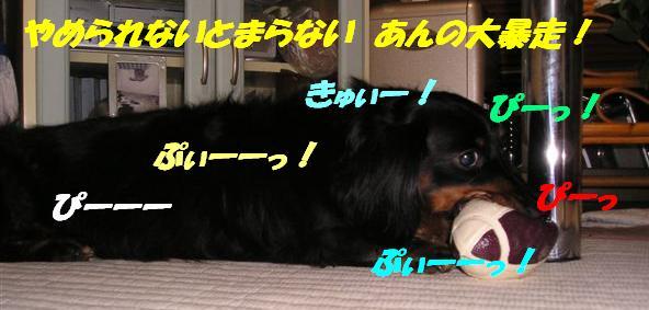 c0000189_11535552.jpg