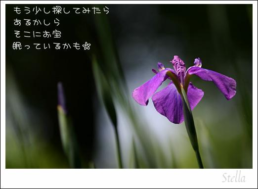 d0015026_10144979.jpg