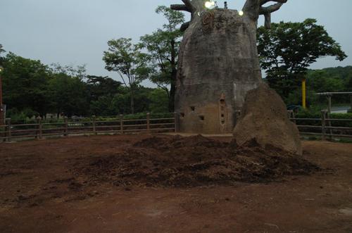 アフリカゾウの視点_b0023856_21545539.jpg