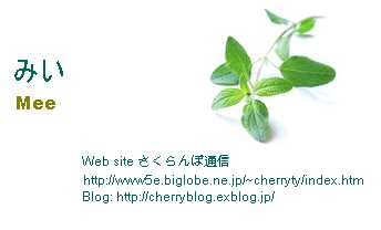 b0043980_335154.jpg