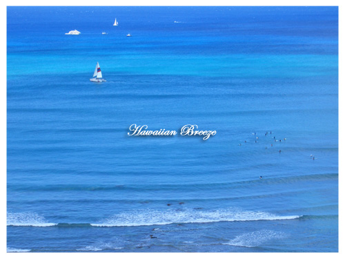 Blue Sea_c0013726_10564686.jpg
