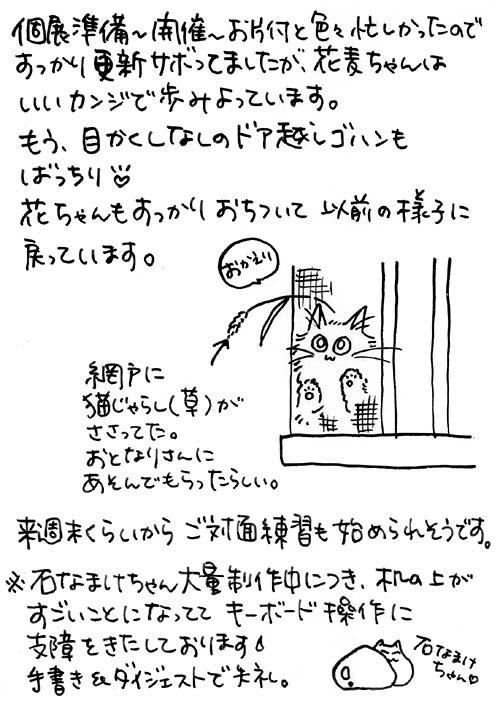 b0028155_19453391.jpg