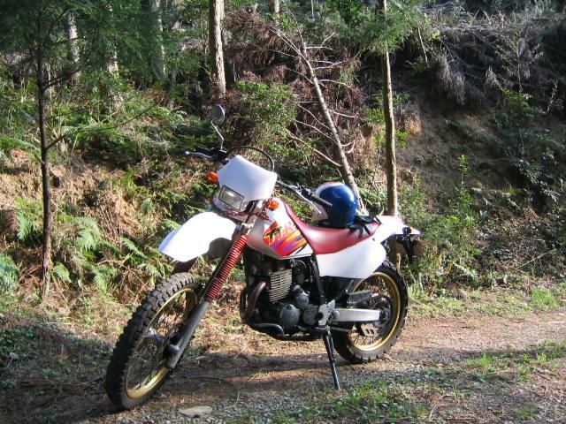 オフロードバイク_d0007657_10485285.jpg