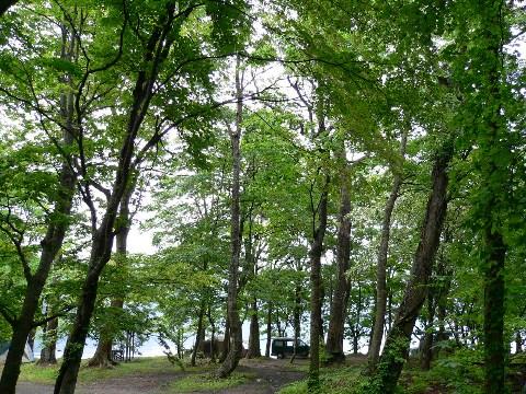 洞爺湖でキャンプ_b0068572_225157.jpg