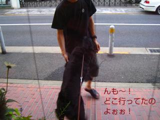 c0012120_025676.jpg
