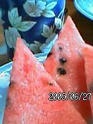 c0050857_7273868.jpg