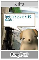 a0036897_18425534.jpg