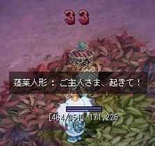 c0075028_335531.jpg