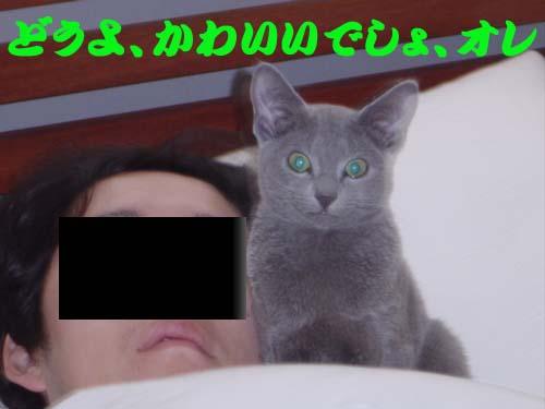 d0056879_1717119.jpg