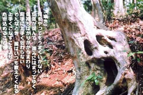 嘆き_b0044724_0534988.jpg