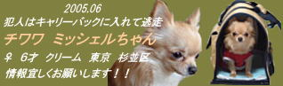 e0010326_15412776.jpg