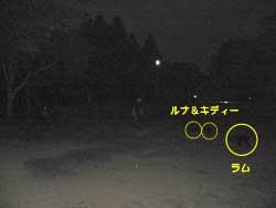 b0005299_18322960.jpg