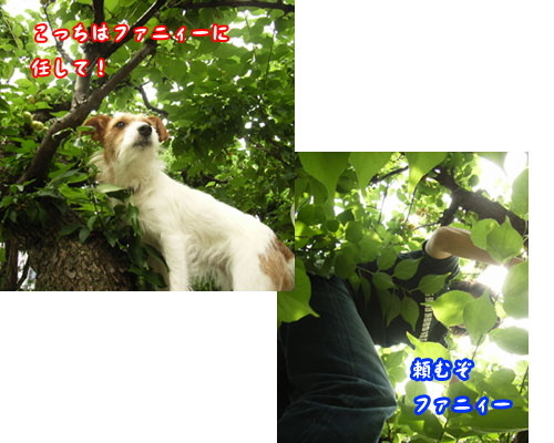 c0031808_200493.jpg
