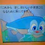 b0049020_16294153.jpg