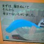 b0049020_16303986.jpg