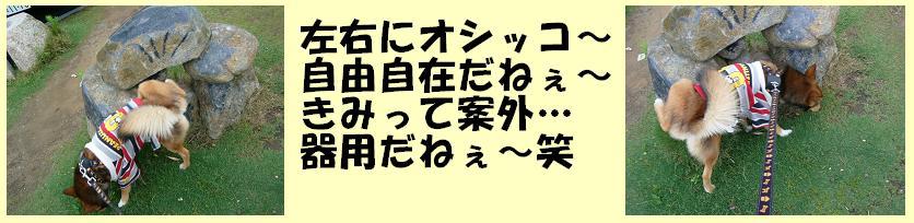 d0032004_2127237.jpg