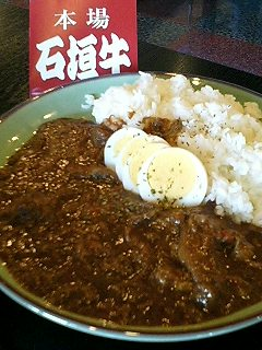 コレカラ牛+カレー_c0033210_1573562.jpg