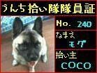 b0040334_2264351.jpg