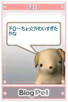 b0035937_17571132.jpg