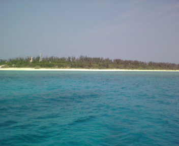 只今水納島遠征中_c0070933_11155865.jpg
