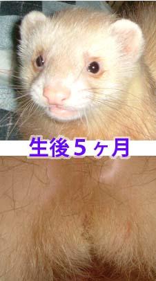 b0025926_1723826.jpg