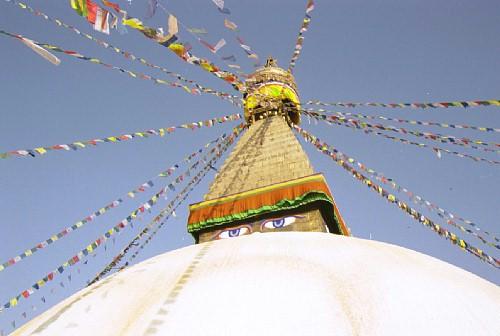 ネパールでどうでしょう(2)_d0066442_20355389.jpg