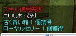 e0021206_331632.jpg