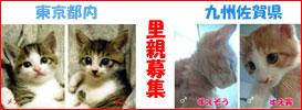 b0065666_019270.jpg