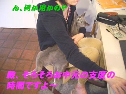 d0056879_1059294.jpg