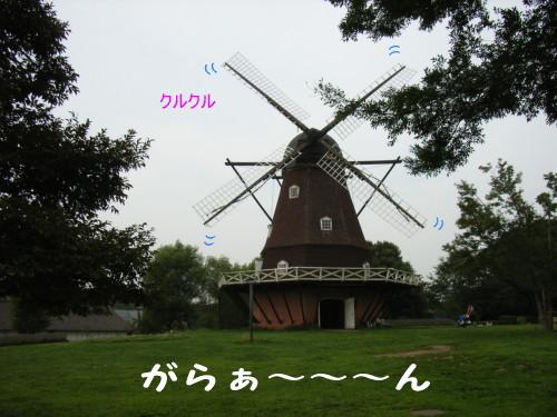 a0021882_11465645.jpg