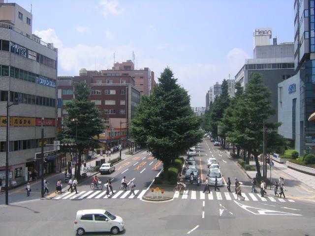 広瀬通りを望む : 仙台・幸町か...