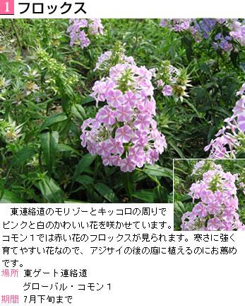 d0048312_20335017.jpg