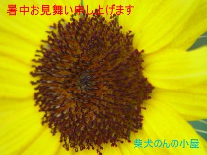 b0011516_23281198.jpg
