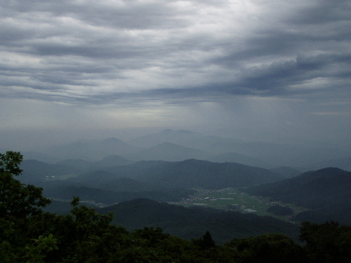 d0049138_135892.jpg