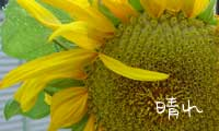 b0065666_21352841.jpg