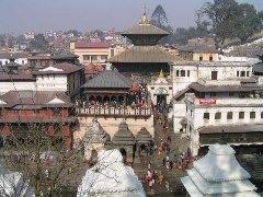ネパールでどうでしょう(4)_d0066442_193817.jpg