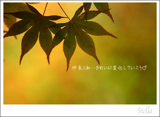 d0015026_15383625.jpg